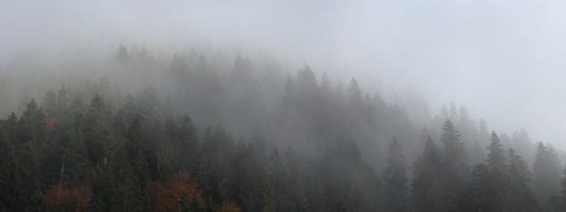 nachhaltige unterkuenfte in deutschland urlaub in der natur in den bergen ruhe allgemeine geschaeftsbedingungen portalbedingungen für anbieter