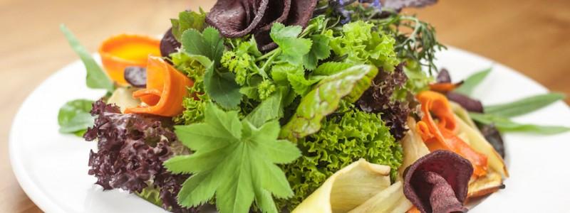 nachhaltige unterkuenfte in deutschland solidarische landwirtschaft biologischer anbau gemeinwohlprinzip vegetarische speisen saisonal regional lokal
