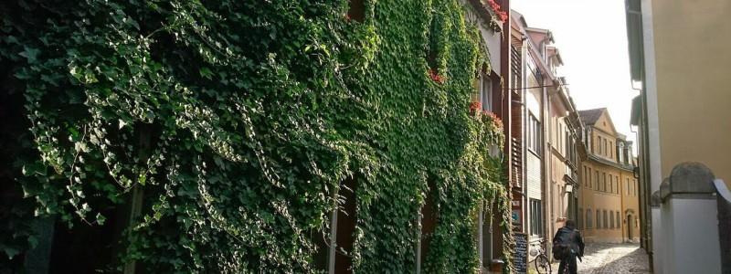 nachhaltige unterkunft familienhotel weimar urlaub in deuschland in der stadt oekologisches holzhaus stadturlaub staedtereise mit kindern mit grosseltern apartments umweltbewusstes reisen efeu