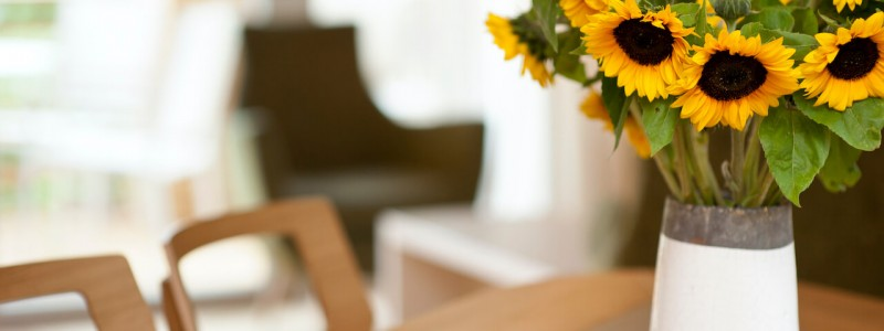 nachhaltige unterkunft familienhotel weimar urlaub in deuschland in der stadt oekologisches holzhaus stadturlaub staedtereise mit kindern mit grosseltern apartments umweltbewusstes reisen tisch sonnenblumen