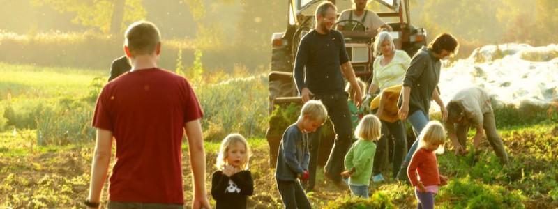 nachhaltige unterkuenfte in deutschland urlaub auf dem land in der natur gemeinwohlprinzip solidarische landwirtschaft hotel schloss blumenthal gruppen seminare blumenthaler auf dem feld