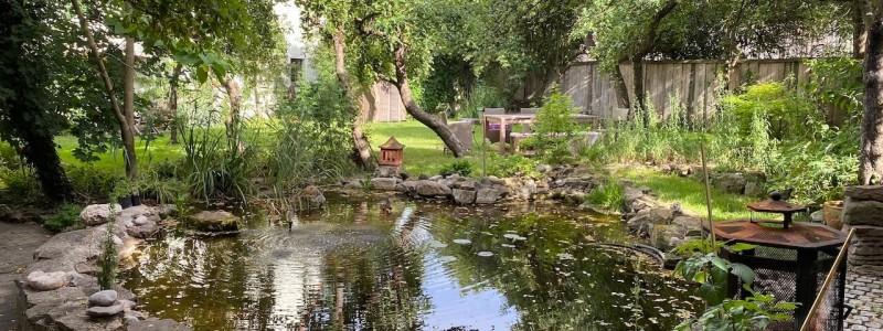 steigerwald franken into the green eco resort glamping zelte yoga retreat urlaub in der natur biologischer gemueseanbau tiere nachhaltiger tourismus teich