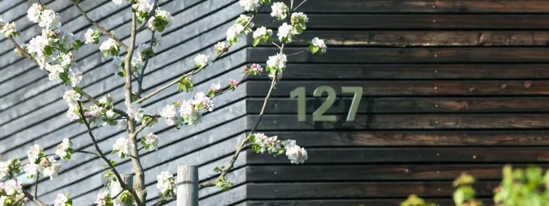 jotvier jungholz ferienwohnung allgäu urlaub in den bergen in der natur mit der familie mit hund nachhaltige bauweise heimische natürliche hölzer baumaterialien kirschblüte