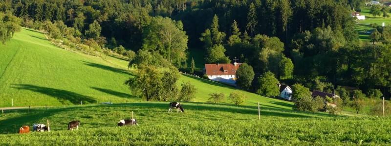 nachhaltige unterkuenfte in deutschland urlaub in der natur auf dem land am wasser ruhig kinder familie landhotel martinsmuehle blick auf das haus in die berge auf den see