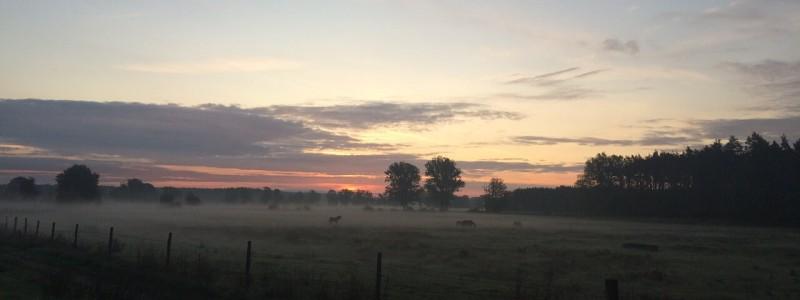 sonnenhaus havelberg urlaub in deutschland in der natur in sachsen-anhalt an der havel an der elbe mit dem rad auf dem land im gruenen nachhaltige historische unterkunft auenlandschaft sonnenuntergang