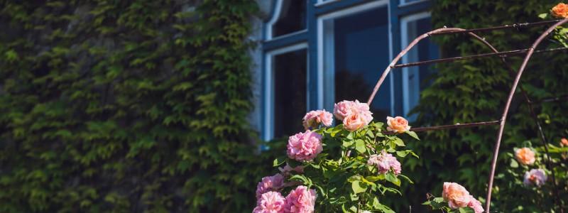 villa breitenberg bayerischer wald nachhaltige unterkunft boutiquie hotel ferienwohnung natur berge ruhe biologische kueche kultur seminare yoga retreats hochzeiten rosenrabatten